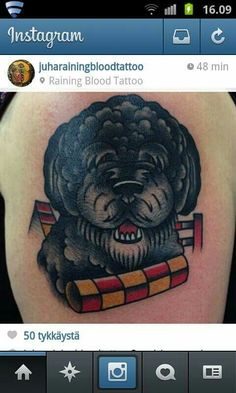 My second tattoo. Just after getting it. Old school style. My spanish waterdog and our hobby, agility. Made by Raining blood tattoo, Lappeenranta, Finland