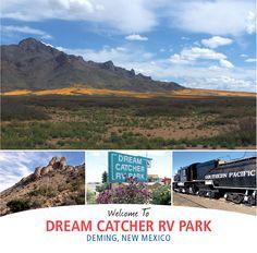 Aguanga Desert Ca Places I Ve Been Pinterest Deserts Cas And D