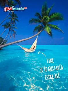 ¡Qué buen sábado! como para ir a la playa a relajarse y refrescarse, ¿no te gustaría estar así?