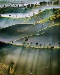 #nature #sun #dust