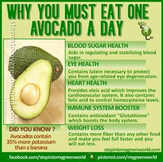 ☛ Why YOU must eat 1 avocado a day.  FOR AN AVOCADO SMOOTHIE RECIPE:  http://www.stepintomygreenworld.com/greenliving/kiwi-arugula-and-avocado-body-healer-smoothie/  ✒ Share | Like | Re-pin | Comment