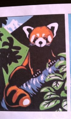 1000+ images about Red Panda Fundraising Ideas on ...