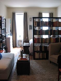 I love small apartments-- bookshelf as a room divider