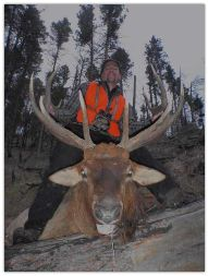 Successful Hunter with a Trophy 6 x7 point bull elk taken with Montana Hunting & Fishing Adventures in the Bitterroot Valley out of Hamilton Montana
