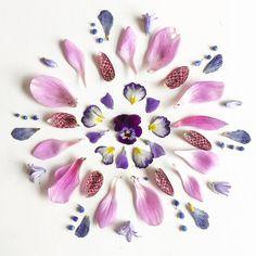 #flowers #mandala #donnevincenti Purple Flowers, Bridal Style, Flora, Mandala, Beautiful Pictures, Create, Instagram Posts, Maya, Heaven
