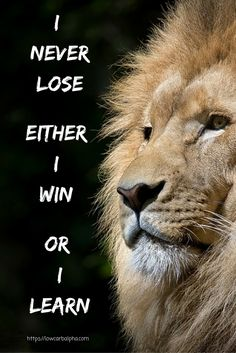 I Never Lose, either I Win Or I Learn https://lowcarbalpha.com/ Inspirational & Motivational Quotes