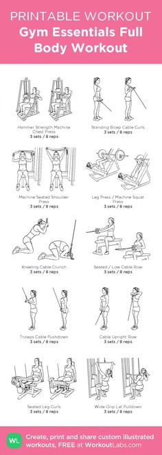 Gym Essentials Full Body Workout · Free workout by WorkoutLabs Fit