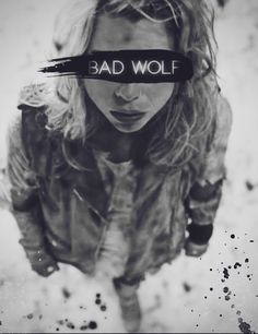 Are you afraid of the Big Bad Wolf, Doctor?