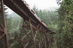 metal steel architecture bridge train transportation railway track trees plants nature outdoor travel forest