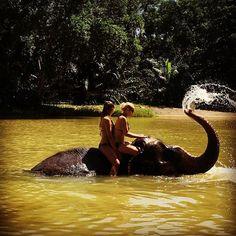 Sexy Women in bikini riding bareback on an Elephant in the jungle. Khao Lak#thailand #swimmingwithelephants