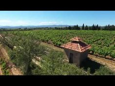 AB Real Estate France: Domaine Magellan, Magalas, Languedoc-Roussillon, F...
