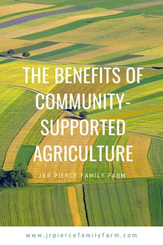 CSAs, or community-supported agriculture, are the latest trend when it comes to the sustainable local food movement. But is a CSA right for you - as a farmer or consumer? Building Raised Beds, Raised Garden Beds, Organic Gardening, Gardening Tips, Vegetable Gardening, Agriculture Business, Community Supported Agriculture, Farm Projects, Market Garden