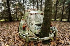 A tree groes in a VW Beetle from the GDR. This beetle was supposedly the first car to cross the German border after the Berlin Wall fell. places where has on the things people abandoned. Auto Volkswagen, Vw T1, Volkswagen Germany, Berlin Wall Fall, Rust In Peace, Vw Vintage, Rusty Cars, Abandoned Cars, Abandoned Vehicles