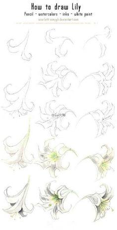 [cp]@Sai大师: #绘画学习# 玫瑰,牡丹,以及各种花卉绘制过程参考!喜欢花花的同学一定不要错过!收藏练习~[/cp]