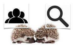 Vente Et Marketing Digital:   The Two Hedgehog Model, perfect for marketing ea...