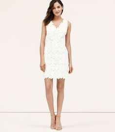 Affordable Floral Lace Dress that looks like a million bucks!