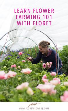 Learn how to build a flower farm business on two acres or less from author & leading farmer-florist, Erin Benzakein of Floret. Floret Workshops now available online.