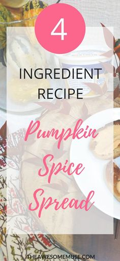 How to make pumpkin spice spread and dip. What a treat for your family's breakfast, snack or appetizer. It's great on toast, bagels or even on pita chips. And it only clocks in at 29 calories per serving, so it's a great healthy treat made with Real California Milk. #SealsForGood