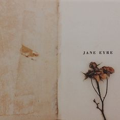 """Jane, be still; don't struggle so like a wild, frantic bird, that is rending its own plumage in its desperation."" ""I am no bird; and no net ensnares me; I am a free human being, with an independent will; which I now exert to leave you.""  ― Charlotte Brontë, Jane Eyre"