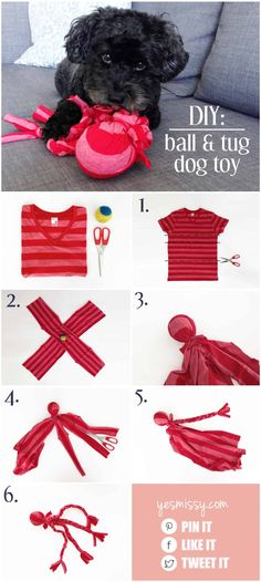 dog will love this DIY tug toy! DIY dog toys - make this easy no sew ball and tug toy from an old t-shirt and tennis ball!DIY dog toys - make this easy no sew ball and tug toy from an old t-shirt and tennis ball! Diy Dog Toys, Cat Toys, Toy Diy, Diy Animal Toys, Diy Toys Easy, Cute Dog Toys, Homemade Dog Toys, Diy Pour Chien, Toy Puppies