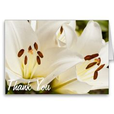 Thank You Flowers Greeting Card #photography #nature #flower #thankyou $3.15