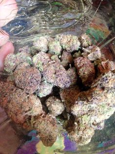 Buy All Types Of #Weed online-Buy #Marijuana online  #Cannabis Oil For Sale It's all about top quality *Have it delivered to your door.Call or text (540)-602-5928) Or send me an Email (tompattinson8@gmail.com) • *Shipping is possible in all states within USA and almost everywhere around the world!!
