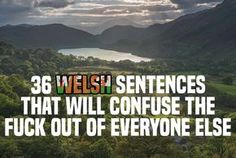 36 Welsh Sentences That Will Confuse The Fuck Out Of Everyone Else Welsh Phrases, Welsh Sayings, Welsh Words, Funny Quotes, Learn Welsh, Welsh Language, Phrases And Sentences, England And Scotland, Wales