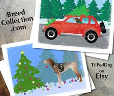 American English Coonhound Dog Christmas Cards from the Breed Collection - Digital Download ❤  Find more Breed Collection here…. ❤ BreedCollection.com ❤ TriPodDog.Etsy.com ❤ TriPodDogDesign.RedBubble.com ❤ http://www.zazzle.com/breed_collection