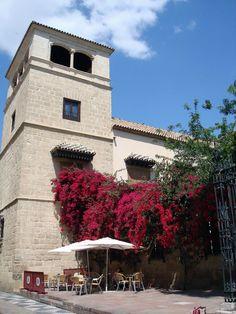 Torre del Museo Picasso y terraza de restaurante, Malaga, Spain