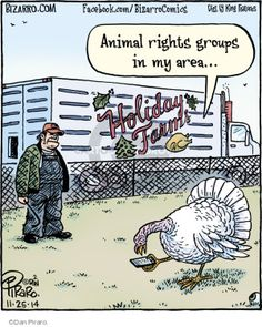 The Comic Strips Dan Piraro Bizarro  Thanksgiving Cartoonholiday