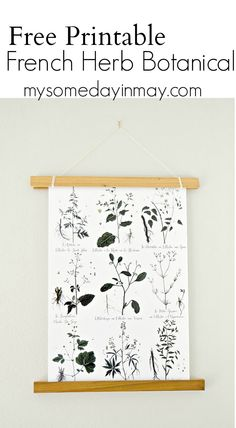 Free printable herb plant print and an easy DIY for hanging artwork.