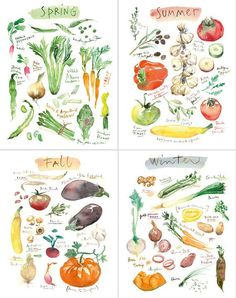 Seasonal vegetables - Set of four prints.  Prints of my original watercolor paintings.  This seasonal fruits set is printed on fine art  BFK Rives
