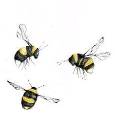 Bumble, Bumble and Bee. #sketch #bees #bumblebees #illustration #drawing #wallpaper #wallcoverings #colour #design #detail #inspiration #interiordesign #homedecor