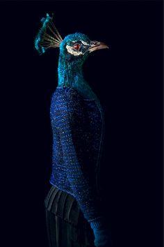The Darker Horse: Photographer Miguel Vallinas: Segundas Pieles (Second Skins)