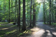ELKMONT CAMPGROUND...I've been a few times, but never camped there. Beautiful, though!