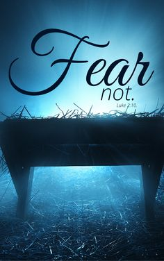 Fear not Luke Christmas Scripture, Luke 2, Background Pictures, Phone Backgrounds, Bible, Neon Signs, Seasons, Biblia, Christmas Writing