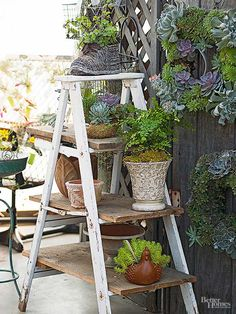 Make cute, unique and rustic-inspired plant containers by using flea market finds. Salvage and upcycle thrifted items such as old ladders, chicken feeders and colanders into plant containers fit for outdoor gardening. Container Plants, Container Gardening, Plant Containers, Container Flowers, Garden Ladder, Old Ladder, Rustic Ladder, Chicken Feeders, Flea Market Finds