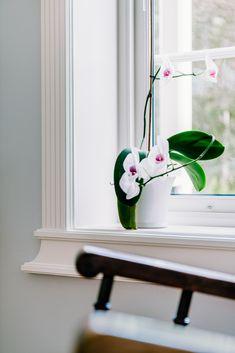 Klassisk vindusomramming gir et rent og vakkert uttrykk. Her ser du hvordan husets slette vegger setter vindusomrammingen og dens detaljer i fokus. House, Home, Haus, Houses
