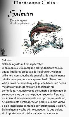 Salmón (5 agos - 1 sept)