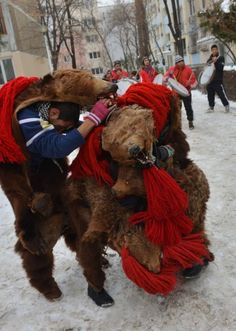 Romanian children wearing real bear skins coming from the Bacau region (some 340 km northeast from Bucharest) perform the bears' dance, an ancient tradition before Christmas, in Bucharest, December 23, 2012