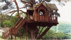 Tree House Venue The Lodge Scottish Wedding