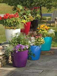 multiple large round rolling plastic self-watering flower pots in various colors in a patio garden