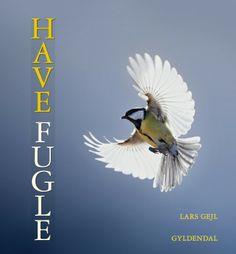 Med lyd/sangstemmer. TITEL: HAVEFUGLE FORFATTER: Lars Gejl UDGIVELSE: 2013 SIDER: 167 FORLAG: Gyldendal