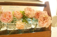 A Garden Tote And David Austin Roses…..And Some Exciting News!