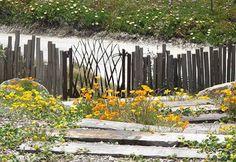 fiona brockhoff gardens - Google Search