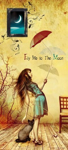 Fly me to the moon . . .