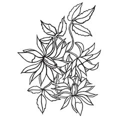 £3.99  darice embossing folder- loose floral | eBay