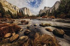 El Capitan meadow in Yosemite national park [OC] [1200x800]   landscape Nature Photos