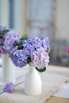 Fresh cut stunning hydrangea flowers are seasonally available at Flyboy Naturals. www.flyboynaturals.com: