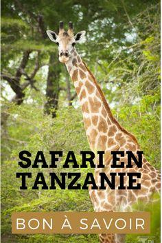 Un safari en Tanzanie: Quels parcs choisir ? Quelle est la meilleures périodes ? Comment bien réussir ses photos de safari ? Tous nos bons plans.